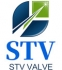 STV Valve Technology Group Co.,Ltd